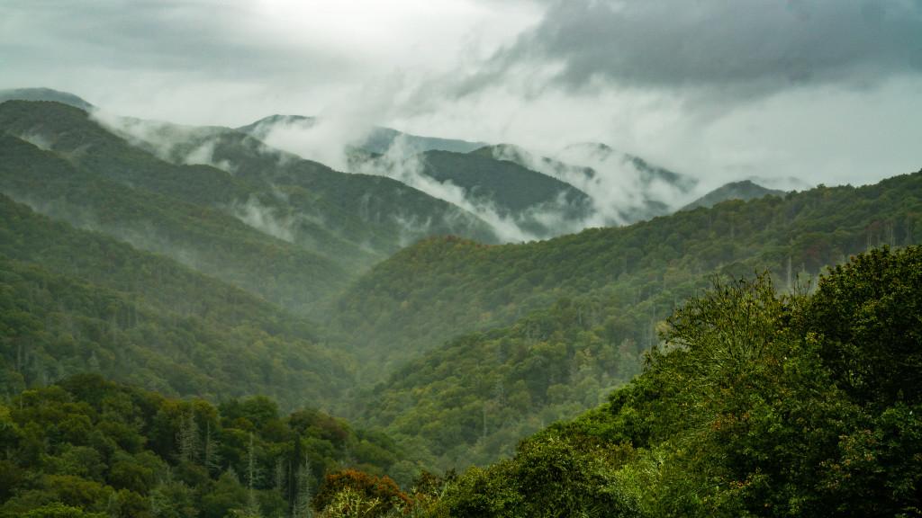 Smoky Mountains-65